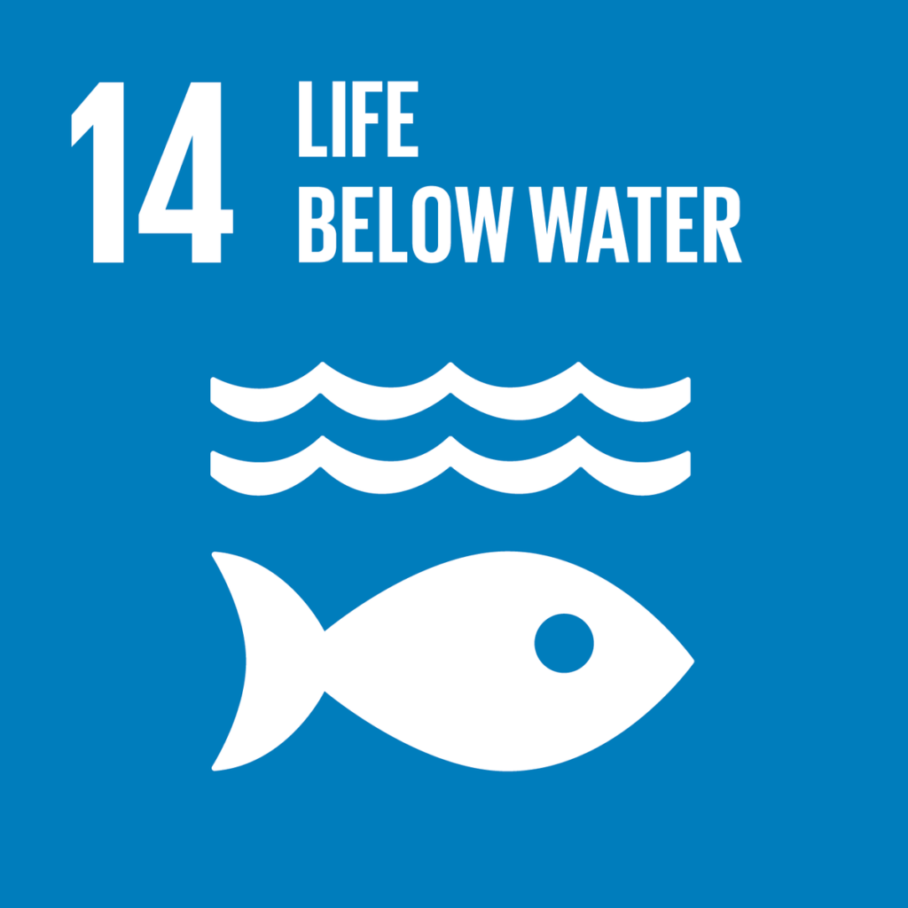 SDG 14 will never be attained if 50% of the population it affects is not taken into consideration